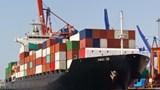 Cục Hàng hải lập đoàn kiểm tra cước vận chuyển hàng hóa đường biển cao bất thường