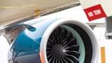 Panel động cơ máy bay hỏng do chim
