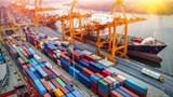 Khan hiếm container rỗng khiến doanh nghiệp lao đao: Cục Hàng hải lập đoàn kiểm tra