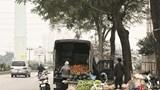 Mất an toàn giao thông trên đường Nguyễn Văn Trác