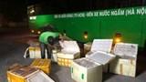 Nghệ An: Bắt giữ vụ vận chuyển gần 1 tấn thực phẩm bẩn bằng xe khách