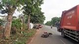 Tai nạn giao thông mới nhất hôm nay 14/4: Đâm vào gốc cây, 2 thiếu niên đi xe máy tử vong tại chỗ