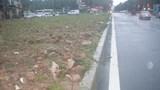 Cần sớm hoàn chỉnh đường Nguyễn Văn Huyên kéo dài