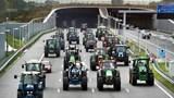 Đoàn máy kéo biểu tính khiến giao thông Hà Lan tê liệt