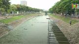 Công ty thoát nước muốn cải tạo sông Tô Lịch thành tuyến buýt đường thủy