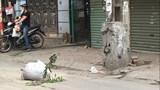 Tiềm ẩn nguy cơ mất an toàn giao thông trên phố Trương Định