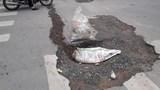 Tiềm ẩn nguy cơ tai nạn trên phố Tôn Thất Tùng