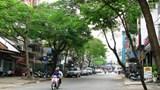 TP.HCM cấm xe ô tô theo giờ tại giao lộ QL1 - Dương Đình Cúc