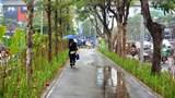 Hà Nội: Nhiều tuyến phố đẹp như tranh sau cải tạo, chỉnh trang