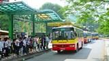 Hà Nội: Transerco đề xuất giảm 900 lượt xe buýt/ngày