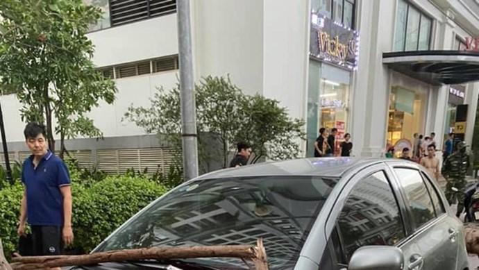 Hà Nội: Dông lốc khiến cây xanh bật gốc, đè trúng ô tô đang chạy trên đường