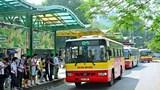 Kiến nghị nhiều giải pháp nhằm phát triển hệ thống vận tải công cộng của thành phố