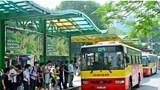 Phê duyệt phương án trợ giá vận chuyển hành khách công cộng