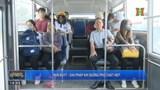 Mini buýt - giải pháp khi đường phố chật hẹp