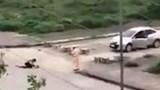 """Một trung tá CSGT bị giáng cấp vì """"đứng nhìn"""" cô gái bị đâm giữa phố"""