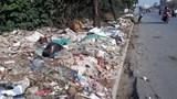Cuối năm, rác thải lại tràn ngập đường gom Đại lộ Thăng Long