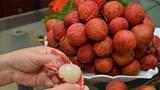 Uống siro, ăn hoa quả không làm tăng nồng độ cồn