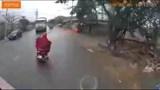 Video: Người phụ nữ suýt gây họa vì sang đường ẩu