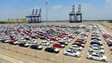 DN nhập khẩu ô tô có bản đồ vi phạm chủ quyền: Tạm dừng giấy phép kinh doanh