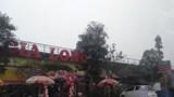 Xử lý vi phạm tại gầm cầu Thăng Long: Đá ném ao bèo