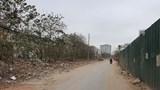 """Xử lý """"núi"""" rác trên đường Nguyễn Cảnh Dị kéo dài"""