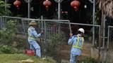 Hàn, đóng hàng rào bị phá trên tuyến cao tốc Nội Bài - Lào Cai