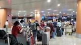 Đưa hơn 240 công dân Việt Nam mắc kẹt ở Myanmar về sân bay Đà Nẵng