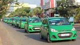 Tập đoàn Mai Linh chuyển hướng sang taxi công nghệ