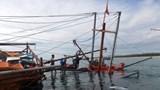 Tàu câu mực bị đâm chìm, 3 người bị thương và mất tích