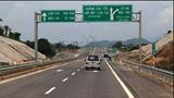 Đề xuất trồng Cọ hai bên cao tốc Nội Bài - Lào Cai