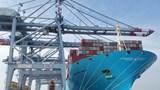 """Bà Rịa - Vũng Tàu: Đón """"siêu tàu"""" container lớn nhất thế giới"""