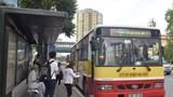 Xe buýt Hà Nội: Phát huy nội lực, khẳng định vị thế
