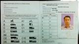 Đẩy nhanh tiến trình đề nghị công nhận lẫn nhau giấy phép lái xe quốc tế Việt Nam - Hàn Quốc