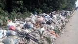 Rác thải lại tràn ngập đường gom Đại lộ Thăng Long