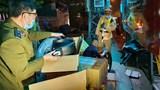 Quảng Nam: Phát hiện xe khách chở 200kg nội tạng không rõ nguồn gốc