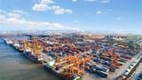 Phê duyệt chủ trương xây dựng 2 bến container tại cảng Lạch Huyện, Hải Phòng