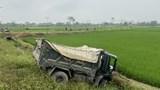 Đâm xe khách móp đầu, xe tải lao xuống ruộng, tài xế bị thương