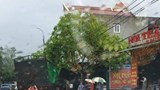 Quảng Ninh: Xe container mất lái đâm vào xe tải khiến 3 người thương vong