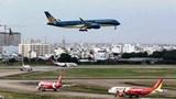Đường băng sân bay Tân Sơn Nhất xuất hiện nhiều chim én, máy bay không thể cất cánh