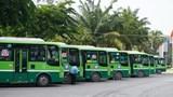 Nhiều địa phương dừng vận chuyển hành khách đến TP Hồ Chí Minh vì Covid-19