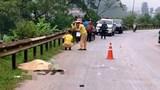 Tai nạn giao thông mới nhất hôm nay (30/8): Tự đâm vào hộ lan đường với tốc độ cao, 2 thanh niên thương vong