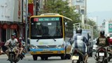Đà Nẵng miễn phí vé trong 30 ngày đầu hoạt động các tuyến xe buýt mới