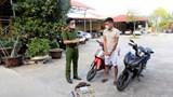 Bắt đối tượng trộm cắp xe máy liên tỉnh