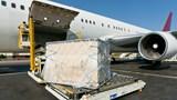 Cục Hàng không Việt Nam bác đề xuất lập hãng hàng không IPP Air Cargo
