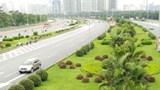 Đại lộ Thăng Long: Cây xanh che khuất tầm nhìn tiềm ẩn nguy cơ mất ATGT