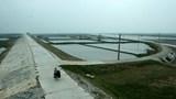 Điều chỉnh chủ trương đầu tư 2 Dự án đường bộ qua tỉnh Nam Định