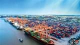 Bộ Giao thông Vận tải lập 2 tổ công tác kiểm tra, rà soát giá cước vận tải biển