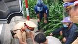 Thanh niên mua 30 viên ma túy về sử dụng trong ngày giãn cách  