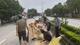 Hình ảnh đẹp của CSGT Quảng Ninh khi giúp người dân thu gom những hạt ngô vương vãi