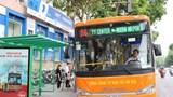 Xe buýt sẽ vẫn là phương tiện công cộng chủ đạo của Hà Nội trong 20 năm nữa.